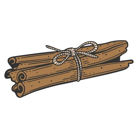 Cinnamon sticks. Vector concept in doodle and sketch style. Hand drawn illustration for printing on T-shirts, postcards.