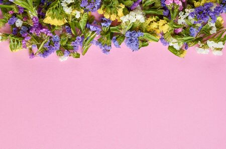 Colored flowers on pink background composition, border, frame. Flat lay and top view photo 写真素材