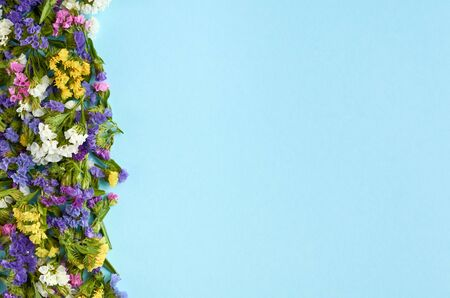 Colored flowers on blue background composition, border, frame. Flat lay and top view photo 写真素材