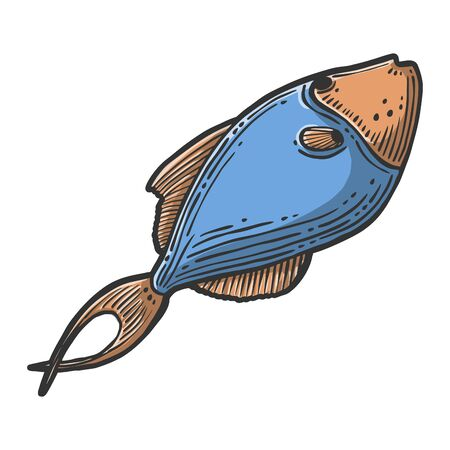 Fish. Vector concept in doodle and sketch style. Hand drawn illustration for printing on T-shirts, postcards. Icon and logo idea.