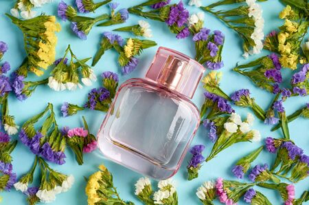 Perfume bottle with colored flowers on blue background composition. Flat lay and top view photo Stock Photo