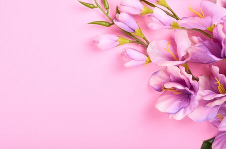 Decorative flowers on pink background composition. Flat lay photo.