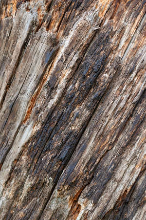 Old aged weathered cracked dark brown wood surface.