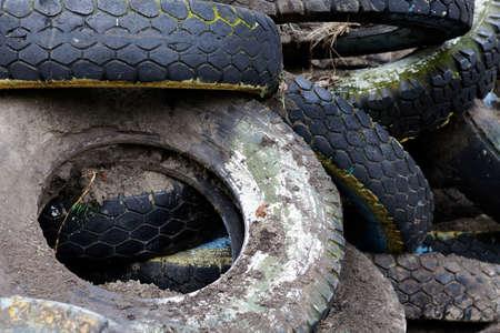 Heap of old muddy tires, junk yard.