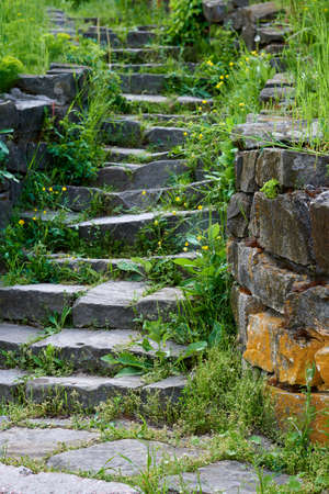 Stone stairs with green grass.