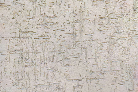 Decorative wall stucco texture and pattern.