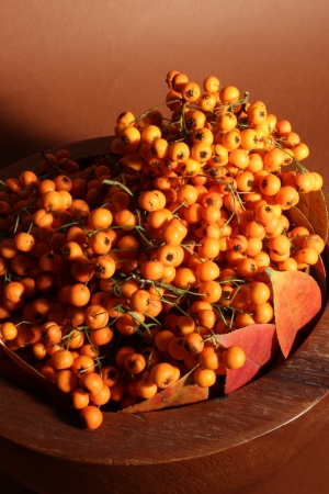 Autumnal fruits photo
