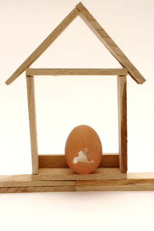 Eggs house photo