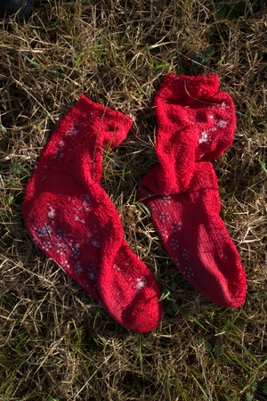 Frozen socks photo