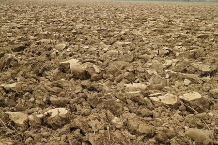 plowed: Plowed soil