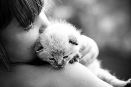 hold: Child and a white kitten. Selective focus.
