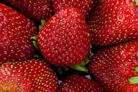 Strawberry group. Close up. Macro. photo