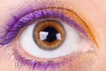 woman eyeball: Woman eye. Closeup. Make up. Stock Photo