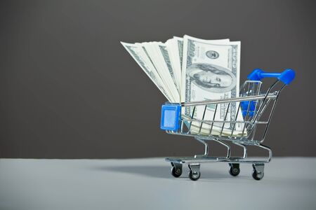Shopping carts with a dollars. Stock Photo - 10300147