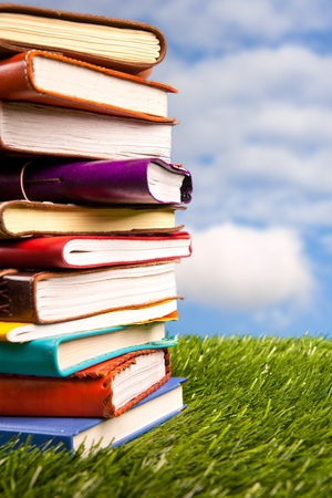 Books in the grass photo