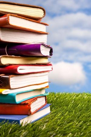 Books in the grass photo