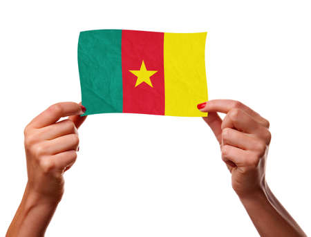 cameroonian: The Cameroonian flag Stock Photo