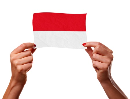 the indonesian flag: The Indonesian flag