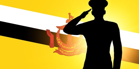The Brunei Flag photo