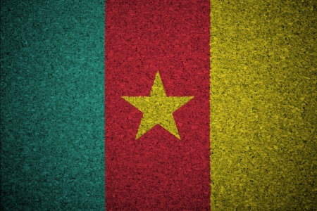 cameroonian: The Cameroonian flag painted on a cork board. Stock Photo