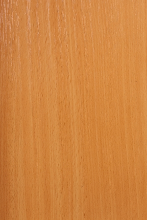 wood texture, high resolution photo.  close up photo