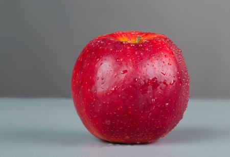 Wet red apple on a gray background photo