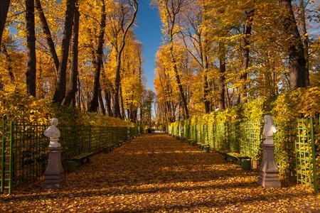 Sommergarten Park in Sankt Petersburg Russland