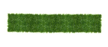 緑の草を白で隔離されます。トップ ビュー。 写真素材
