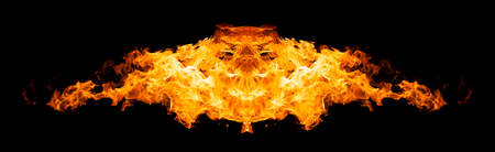 abstract fire: Burning bird silhouette isolated on black background
