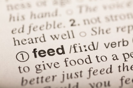 transcription: feed - word in dictionary. macro shot. selective focus Stock Photo