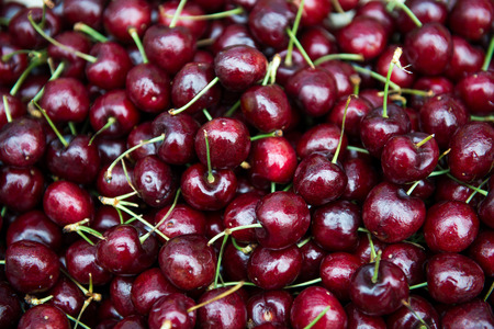 Red cherries 版權商用圖片
