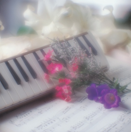 Music instrument Stock Photo - 10721566