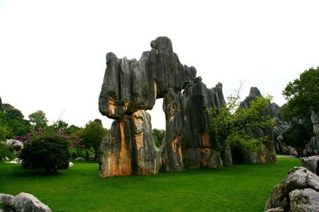 woodland sculpture: Yunnan Province,China