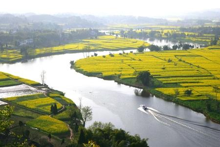 cropland: Chongqing,China