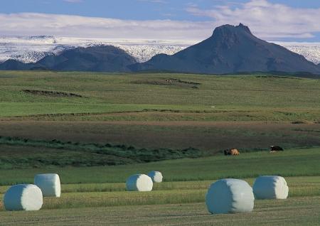 jokul: Jokul and grassland Stock Photo