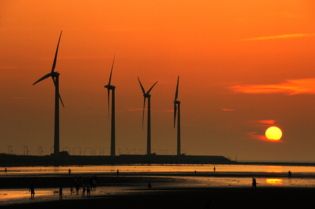 Sunset on the Gaomei Wetland showing wind turbines in the foreground. Фото со стока