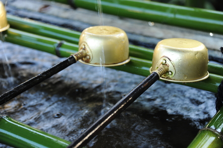 Scoop put on the bamboos Stock Photo