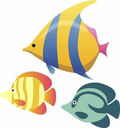 트로픽 물고기 스톡 콘텐츠