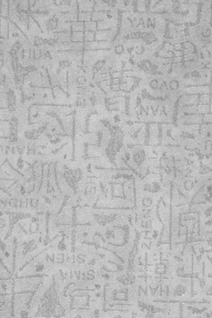 still lifes: Gray wallpaper with Chinese characters
