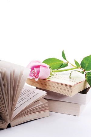 Books and a stalk of pink rose  on white background