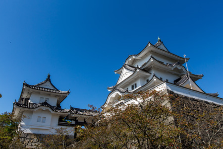 iga: Iga Ueno Castle, Japan