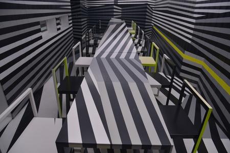 interior  with optical illusion design