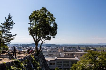 iga: Iga Ueno Castle Japan