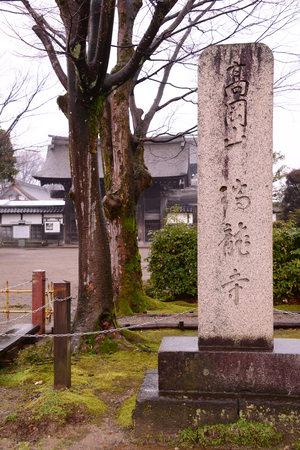 Zuiryuji Temple,Japan
