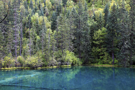 Sichuan Jiuzhaigou Immortal Pool Qinglong Sea