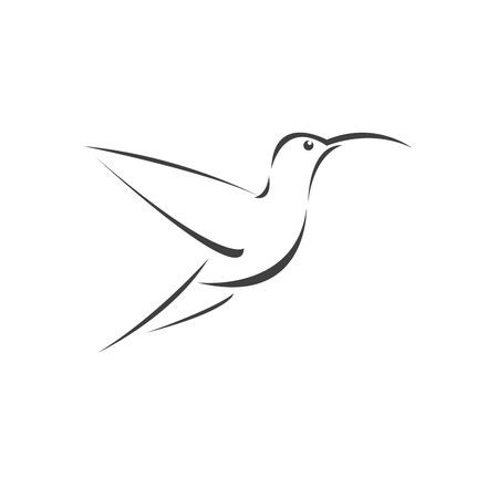 Vector image hummingbird design on white background. icon symbol. Illustrator. Black and White