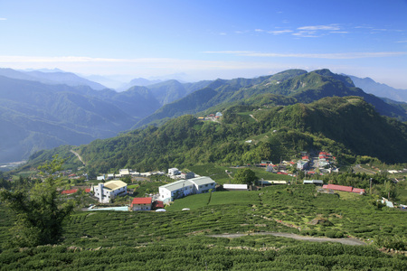 ali: Chiayi County,Ali Mountain