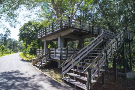 cycleway: Taitung County,Forest Park,Tree House,cycleway LANG_EVOIMAGES