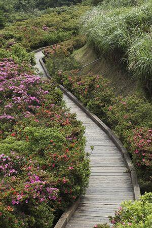turismo ecologico: Yangmingshan National Park