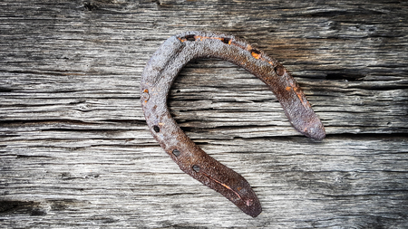 Old rusty metal horseshoe for good luck pinned and nailed on a wooden texture surface background